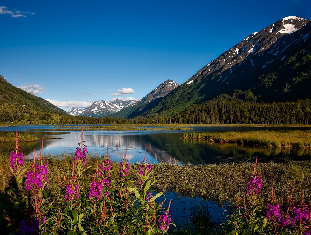 Alaska en Noord-Amerika